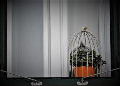I 'pitar' u izolaciji (foto TRIS/G. Šimac)