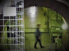 Usamljeni čuvar praznih Dioklecijanovih podruma (foto TRIS/G. Šimac)