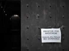 'Prolaz bez zadržavanja' (foto TRIS/G. Šimac)