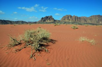Pustinjski pejzaži (foto Joso Gracin)
