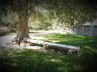 Klupa ispod stabla u središtu sela... prazna