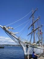 The Tall Ship Festival.