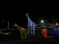 My favourite light thing at the park... African safari lights complete with Mama and baby giraffes.