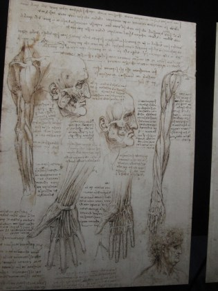 Human body art at the Queen's Gallery... Fascinating.