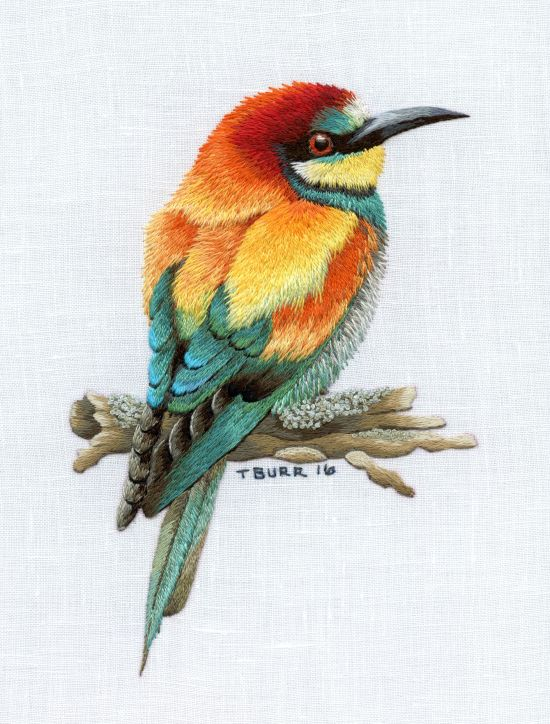 bee eater2