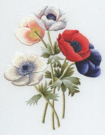 Redoute Anemones