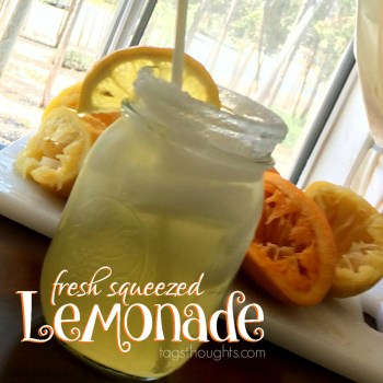 Fresh Squeezed Lemonade that is not too tart nor too sweet. The perfect blend of lemons, an orange & boiled sugar water. Recipe by trishsutton.com.