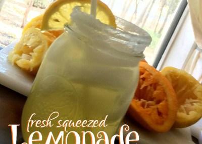 Fresh Squeezed Lemonade by trishsutton.com