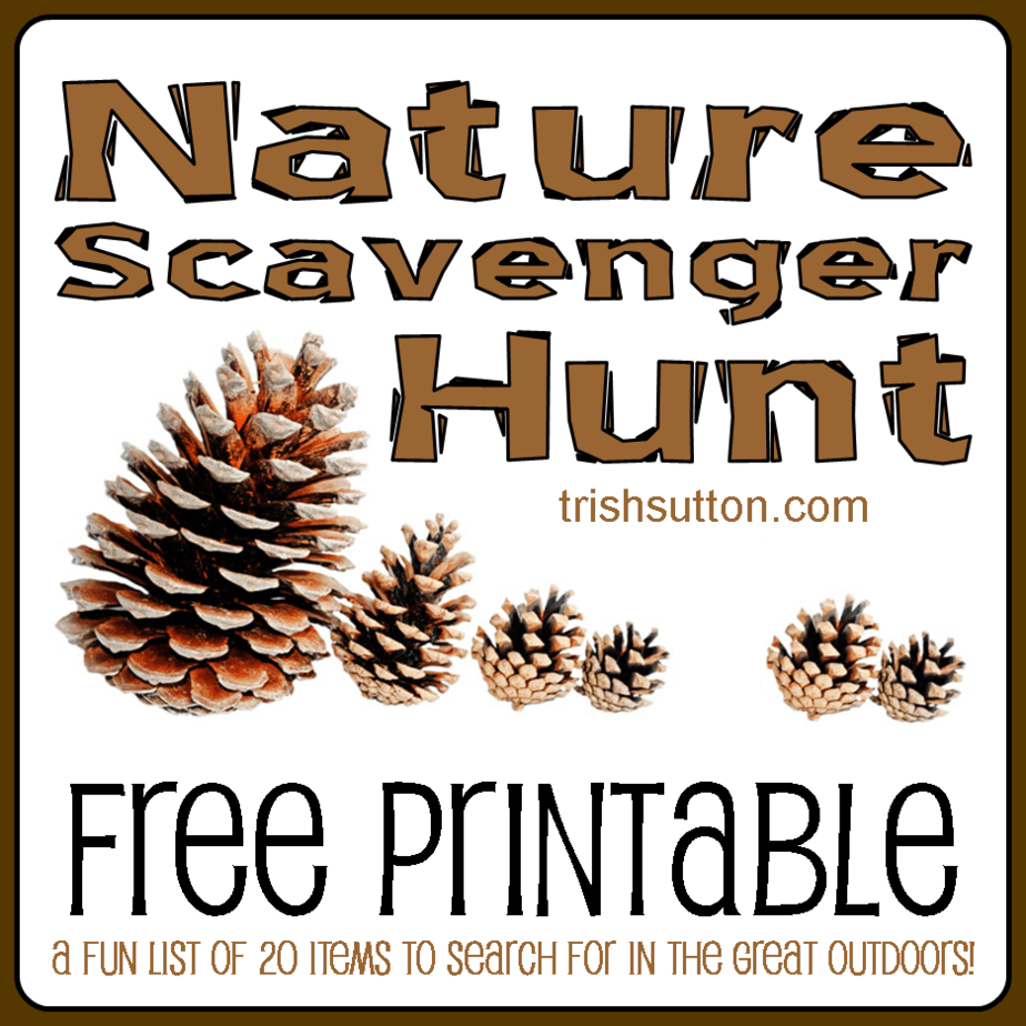 graphic regarding Printable Nature Scavenger Hunt identified as Mother nature Scavenger Hunt; No cost Printable for Young children by way of Trish Sutton