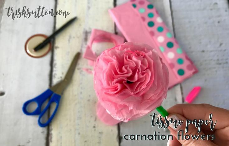 Tissue paper carnation flowers 11 trishsutton trish sutton related mightylinksfo