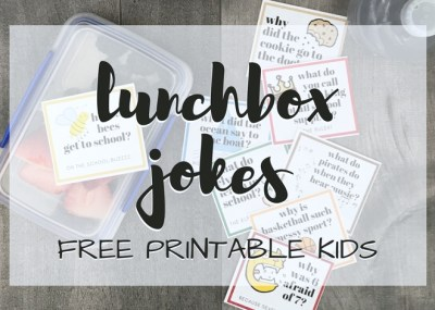 Kids Jokes Silly Lunchbox Jokes Printable for Kids; trishsutton.com
