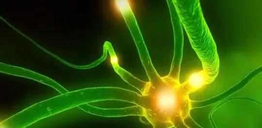 beneficio de la alga espirulina