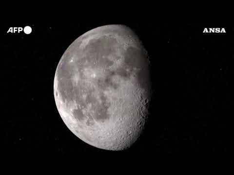 Jeff Bezos perde la sfida con Elon Musk per commessa Nasa su nuove missioni per la Luna