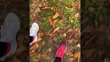 Barbara D'Urso corre tra castagne e scoiattoli #barbaradurso #shorts