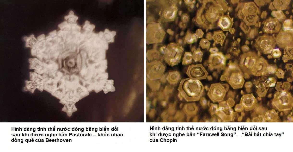Tinh thể nước biểu đạt cảm xúc khi nghe 2 bản nhạc khác nhau trong thí nghiệm của Masaru Emoto (ảnh: masaru-emoto.net)