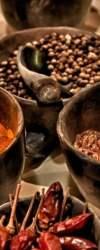 Lợi ích sức khỏe tuyệt vời của 15 loại thảo mộc và gia vị quen thuộc – Trí Thức VN