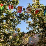 Photo of international flags strung across two trees