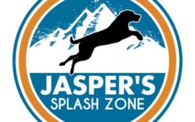 Jasper's Splash Zone – K9 Performance and Aquatics Center