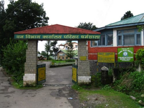 Forest Complex of Forest Department Dharamsala