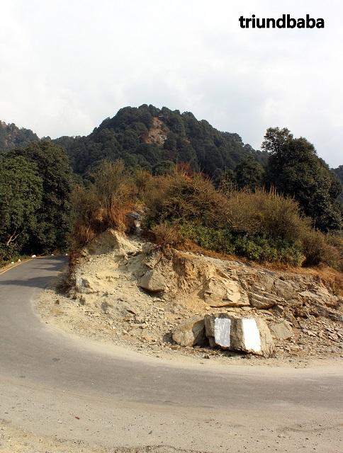 Bir Billing Jungle Trail 2