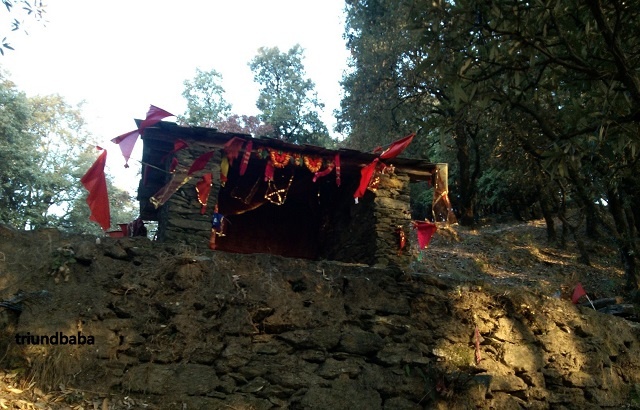 Bir Billing Jungle Trail 3