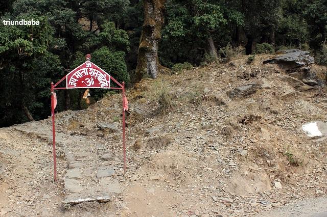 Bir Billing Jungle Trail