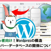 初心者向け!Wordprssの構造・ファイル・サーバー・データベースの関係について