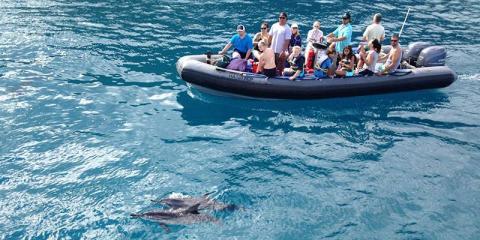 Why You Should Book in Advance Through Kauai Sea Tours, Kekaha-Waimea, Hawaii