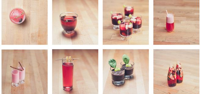 Crowdfunding Spotlight: Sant – dried superfruit infuses into a fresh beverage