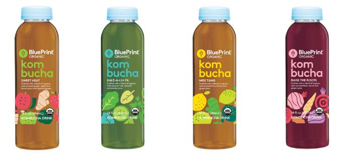 Drink spotlight blue print kombucha trendmonitor drink spotlight blue print kombucha malvernweather Image collections
