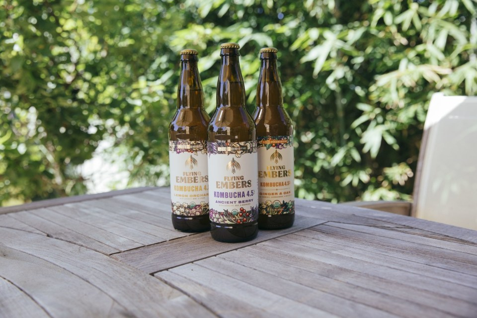 Flying Embers launches adaptogenic organic hard kombucha in partnership with Reyes Beverage Group
