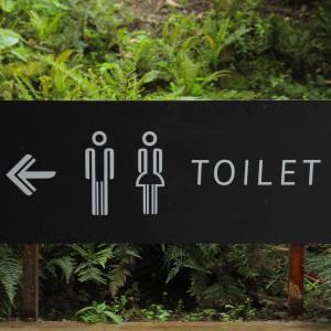 Origin of the word toilet