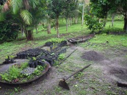 Small sustainable agricultural activities