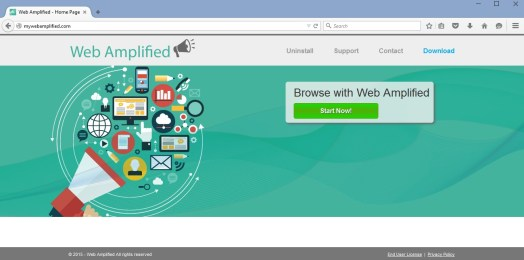 Web Amplified