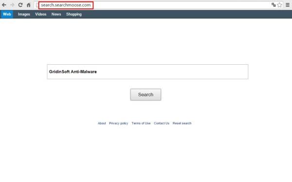 Search.searchmoose.com
