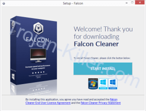 Falcon Cleaner removal guide