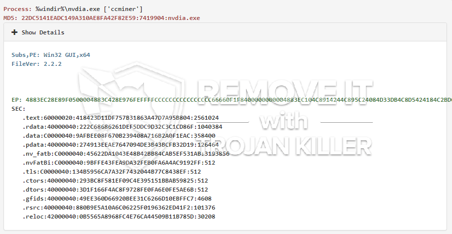remove nvdia.exe virus