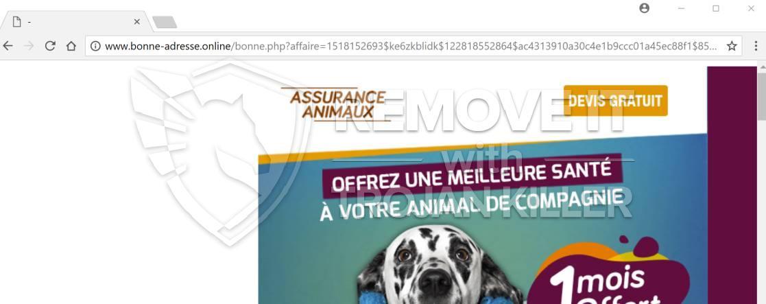 remove Bonne-adresse.online virus