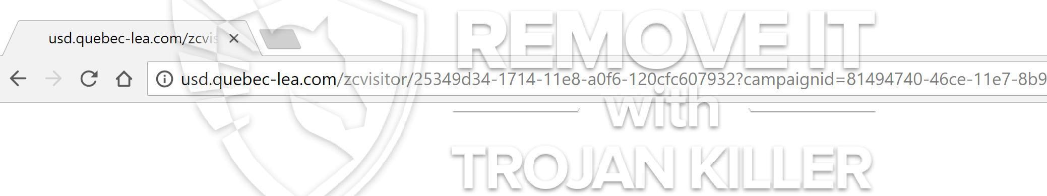 remove Usd.quebec-lea.com virus