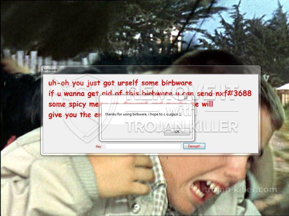 remove Birbware virus