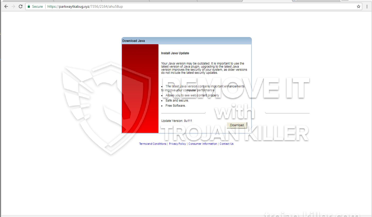 remove Parkwaytkabug.xyz virus