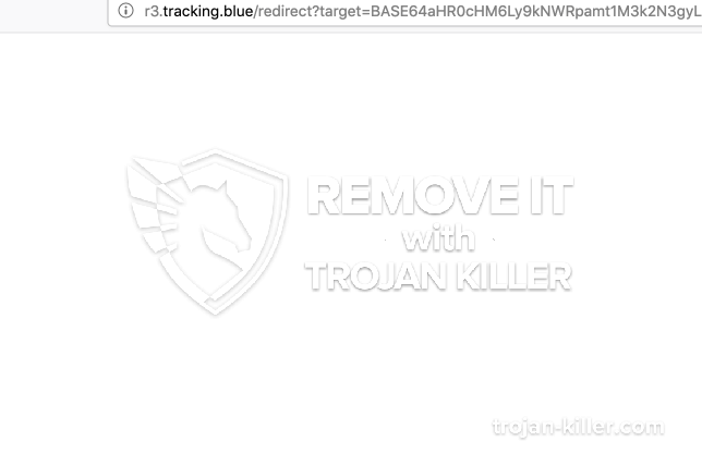 remove R3.tracking.blue virus