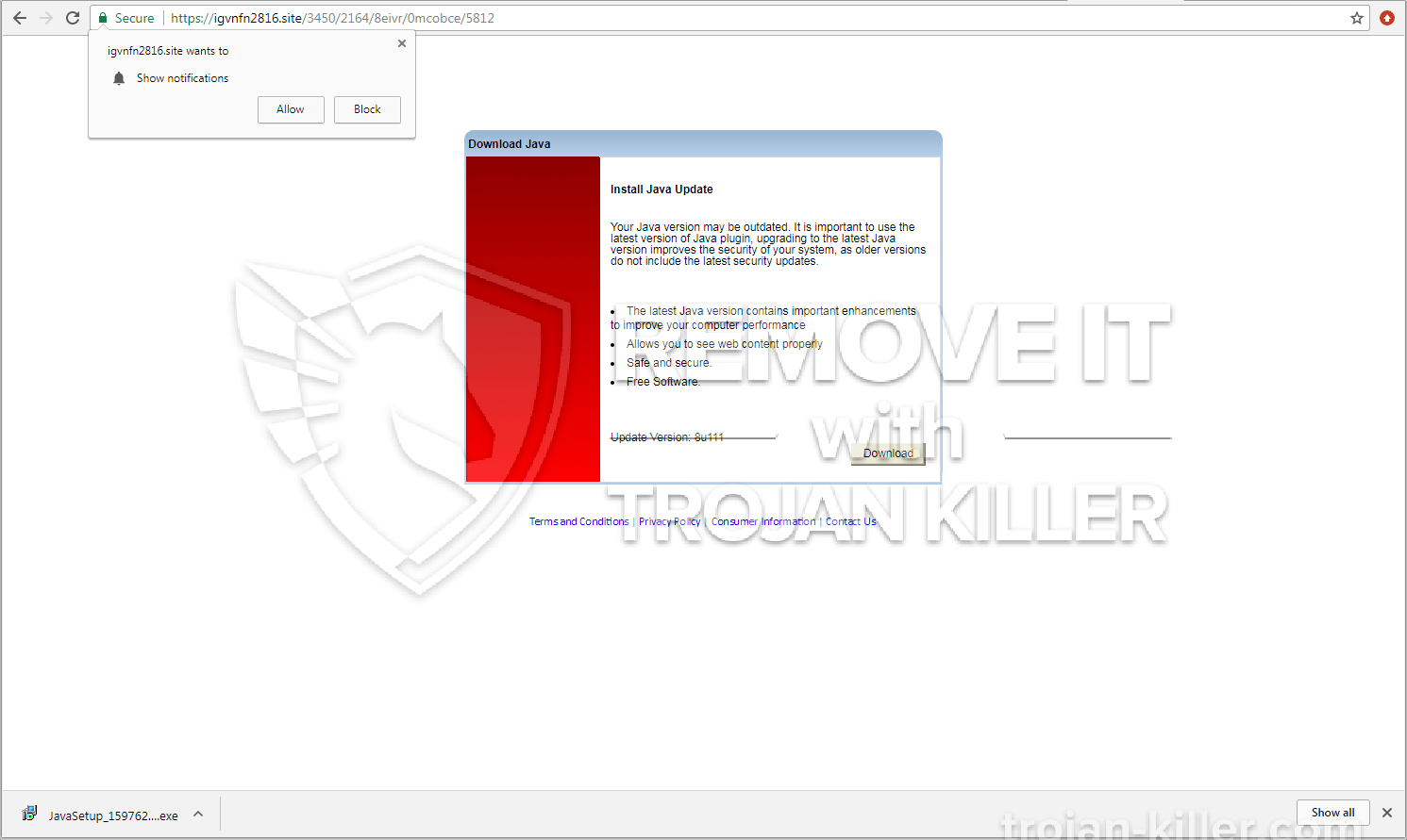 Igvnfn2816.site virus