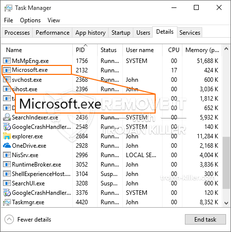 What is Microsoft.exe?