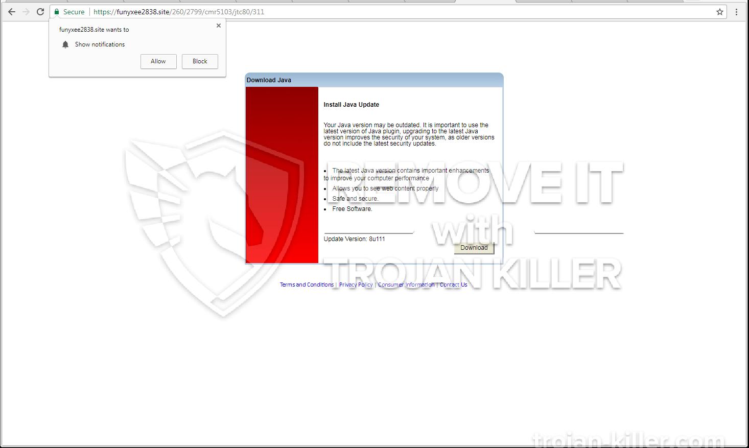 Funyxee2838.site virus