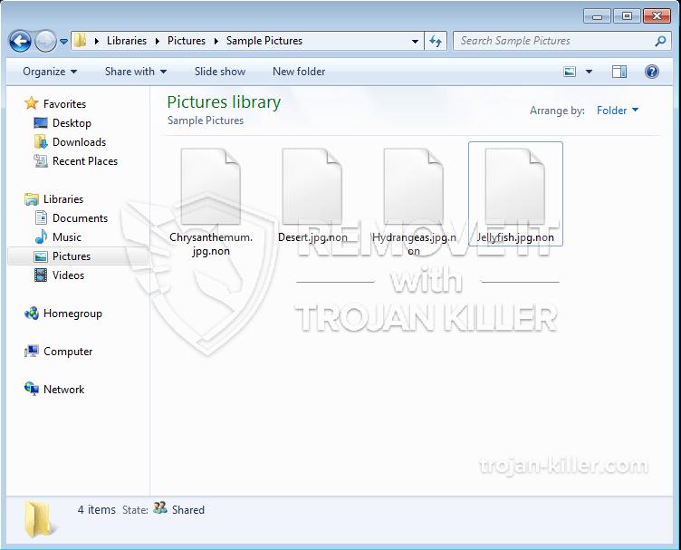 .NON ransomware virus