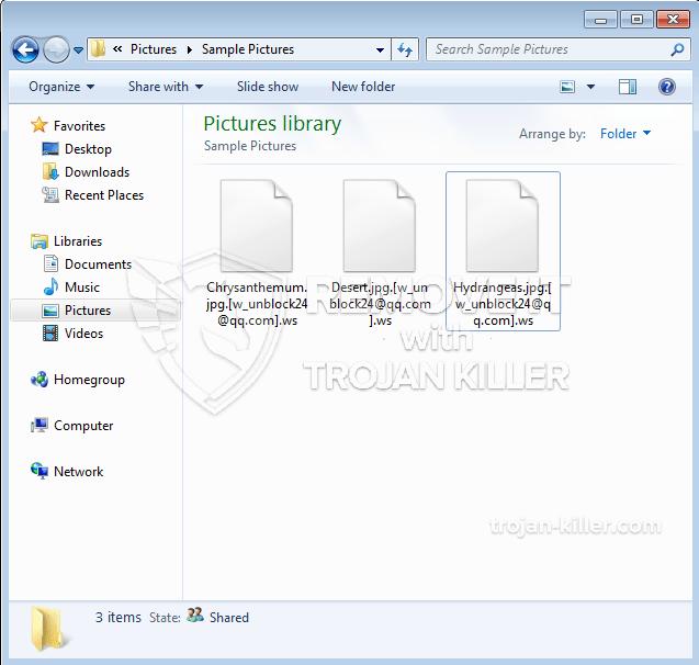 .[w_unblock24@qq.com].ws ransomware virus