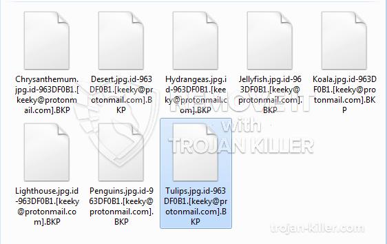 .BKP ransomware virus