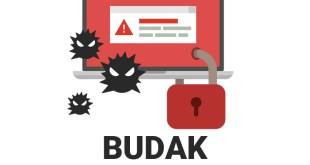 BUDAK Ransomware. How to decrypt .budak files?