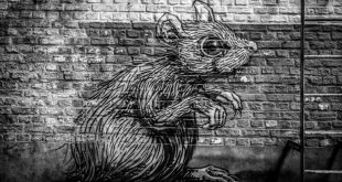 Free Windows Rat Trojan NanoCore May Cause Outbreak
